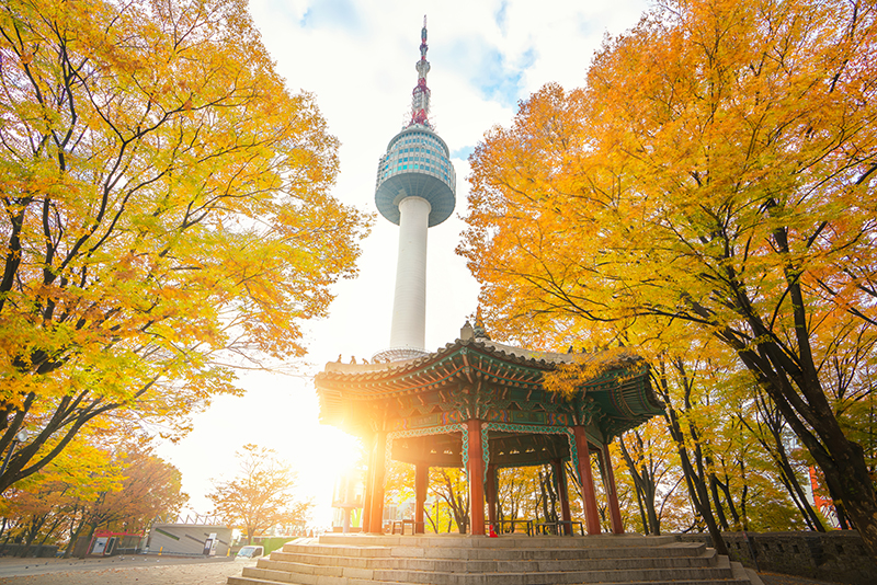 Kết quả hình ảnh cho n seoul tower autumn