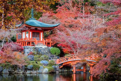 京都的酒店優惠