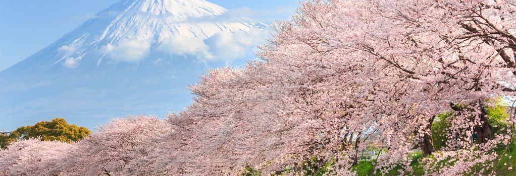 Ryokan Fuji