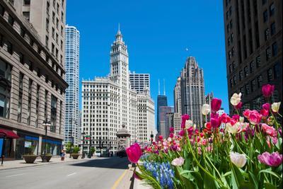 芝加哥酒店