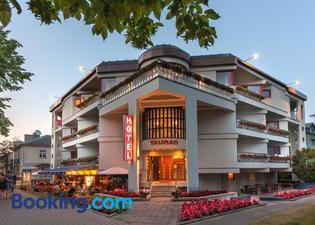 陶拉斯中心酒店