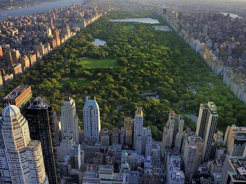 紐約索菲特飯店 - 紐約 - 建築