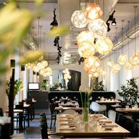 Tiszavirág Szeged Restaurant