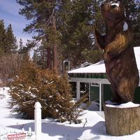 Big Bear Manor Spa Cabins Our Bears greet you