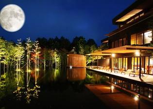 金乃竹酒店