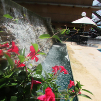 Arbors at Island Landing Hotel & Suites Pool Waterfall