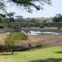 Elephant Valley Lodge Property Grounds
