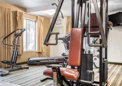 維塞利亞紅杉賓館 - 維塞利亞 - 健身房