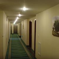 Greentree Inn Tianjin Great Mercy Temple Hotel Interior