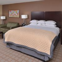 Wyndham Garden Shreveport South Guest Room