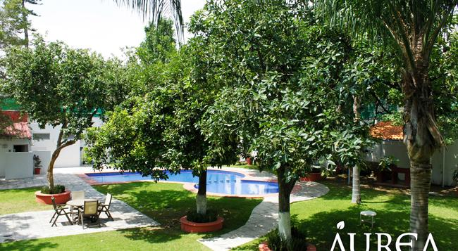 Aurea Hotel and Suites - 瓜達拉哈拉 - 游泳池