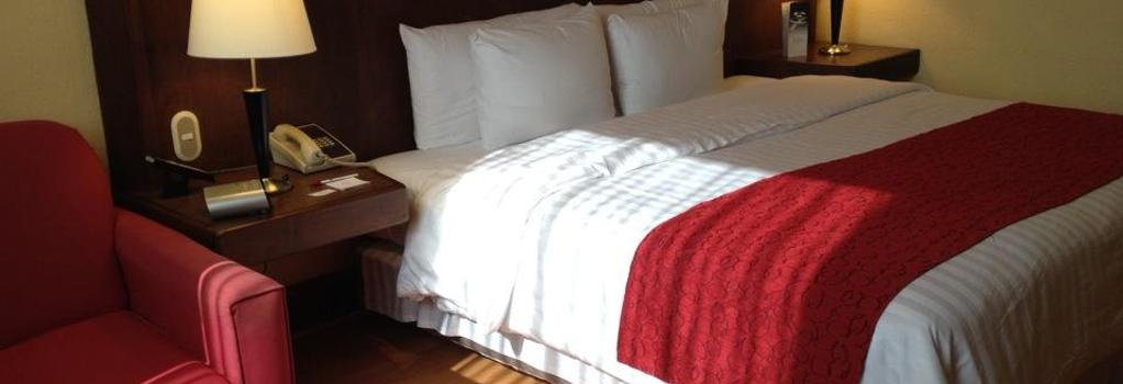 Ramada Va Veneto Mexico City South - 墨西哥城 - 臥室