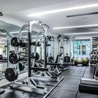 The Mark Gym