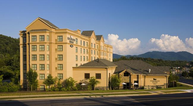 Homewood Suites by Hilton Asheville-Tunnel Road - 阿什維爾 - 建築