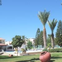 Marion Hotel Pool / Garden