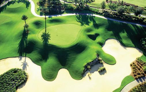 團聚渡假村 (沙羅曼達高爾夫球暨溫泉渡假村) - 基西米 - 高爾夫球場