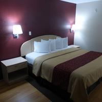 Red Roof Inn & Suites San Antonio - Fiesta Park Guestroom