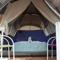 Jungles Edge Jungle Huts choice of 1 or 2 queen size beds