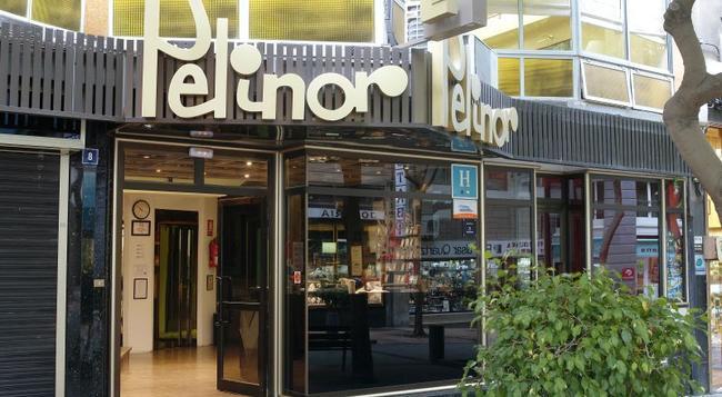 Hotel Pelinor - 聖克魯斯-德特內里費 - 建築