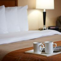 Comfort Inn For a Wonderful Start to your Day