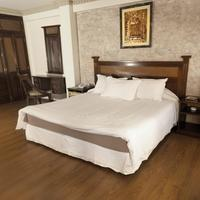 Hotel La Colonia Guestroom