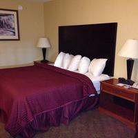 Lacrosse Hotel Lacrosse Hotel Texarkana Standard Guest Room Single