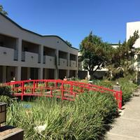 Mikado Hotel Courtyard