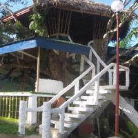Green Mountain Resort Capiz Tree House