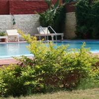 Tiger Safari Resort Outdoor Pool