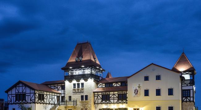 Hotel Castel Royal - Timisoara - 建築