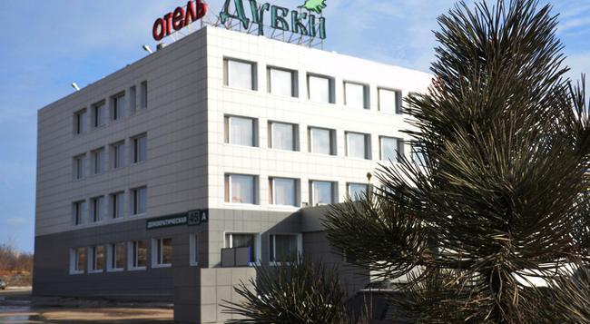 Dubki Hotel - 薩馬拉 - 建築