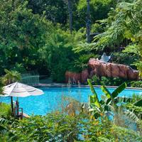 Disney's Animal Kingdom Lodge Pool