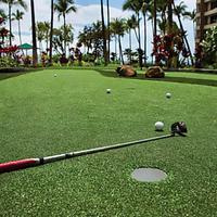 Marriott's Maui Ocean Club - Molokai, Maui & Lanai Towers Golf