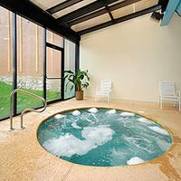 Quality Hotel & Suites At The Falls Indoor Spa Tub