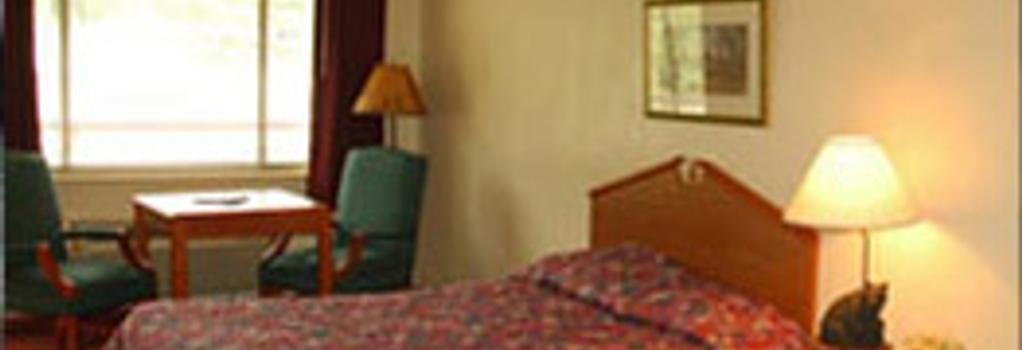 Johnson's Inn - 加特林堡 - 臥室