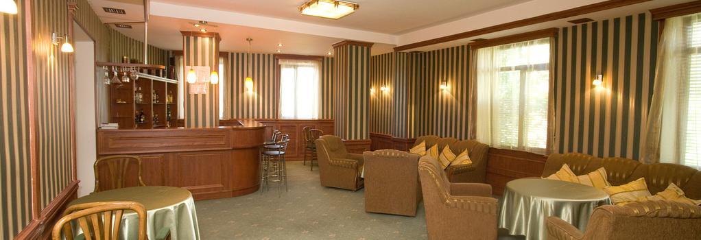 Villa des Roses Hotel - Yerevan - 酒吧