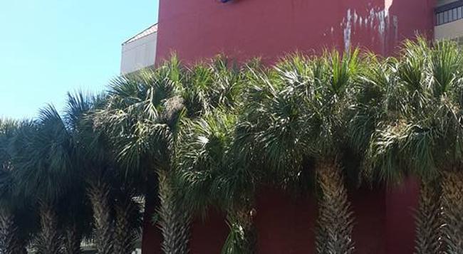Orlando Metropolitan Resort - 奧蘭多 - 建築