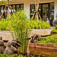 Damrei Angkor Hotel Garden