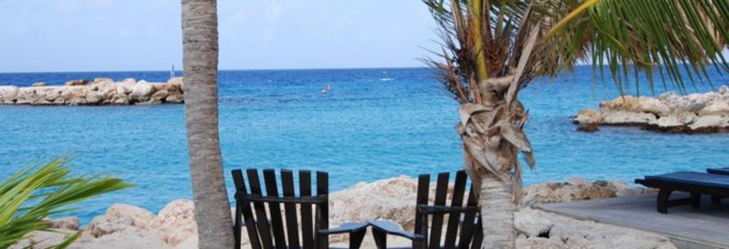 Lions Dive & Beach Resort Curaçao - 威廉斯塔德 - 海灘